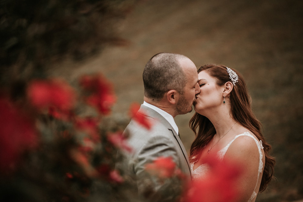 Bride and groom kissing behind rose bush