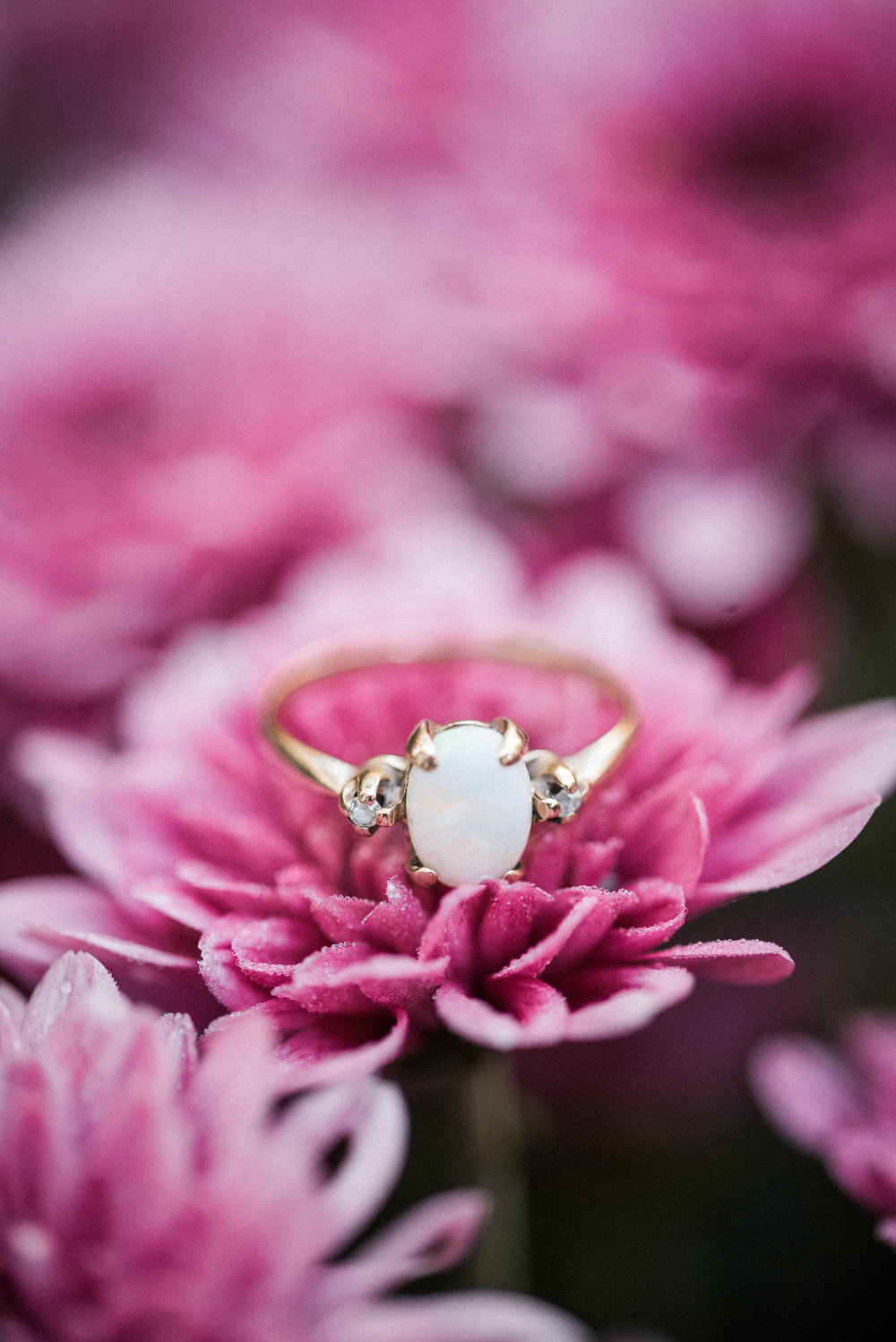 Engagement ring on pink flower