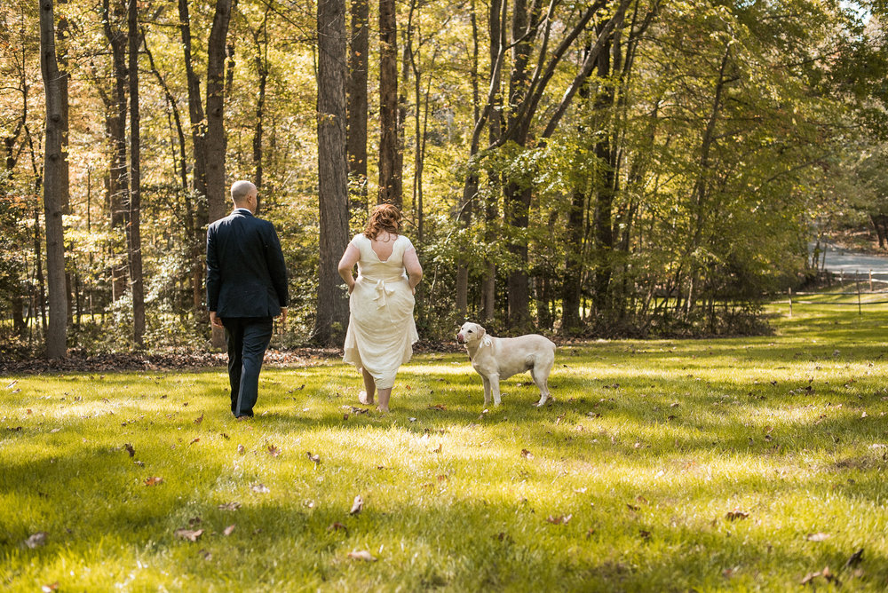 Dog following bride and groom