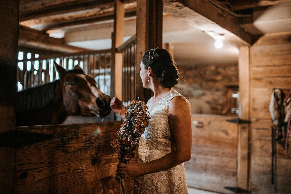 Bride petting horse