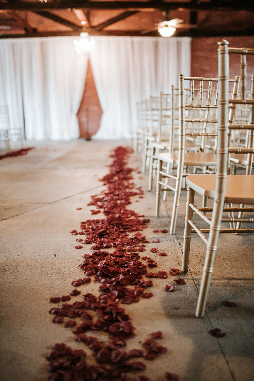 Rose petals on wedding aisle