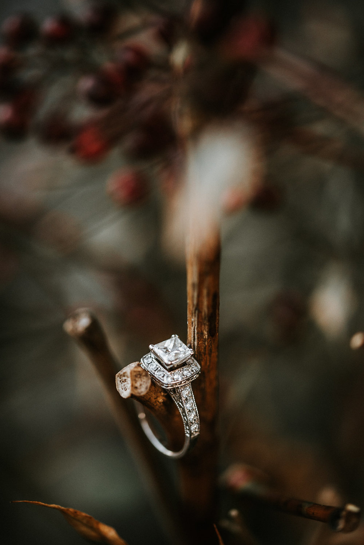 Engagement ring hanging on tree limb
