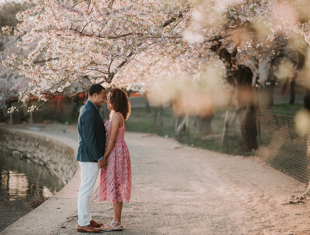 Couple kissing under cherry blossom tree