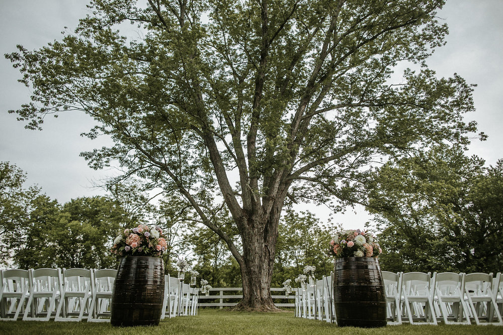 Outdoor wedding venue with big tree