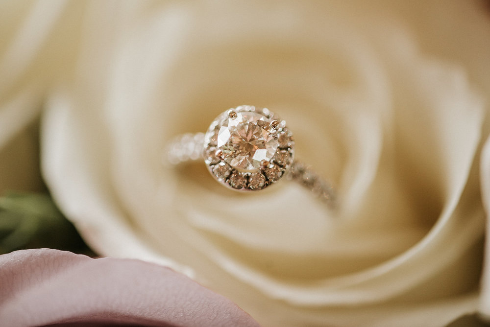 Diamond ring in white rose