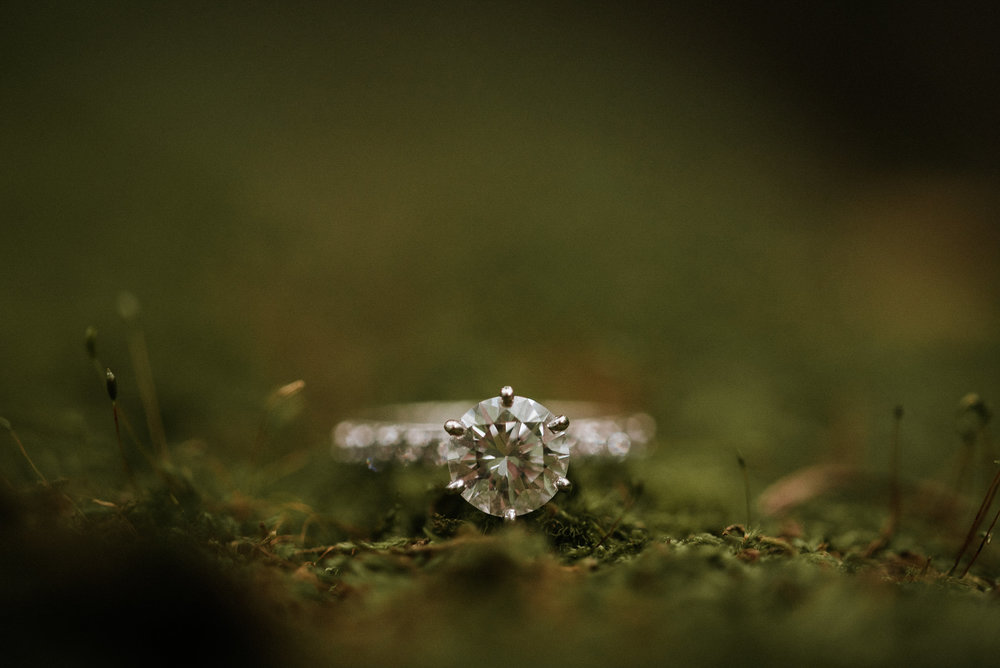 Diamond ring on mossy rock