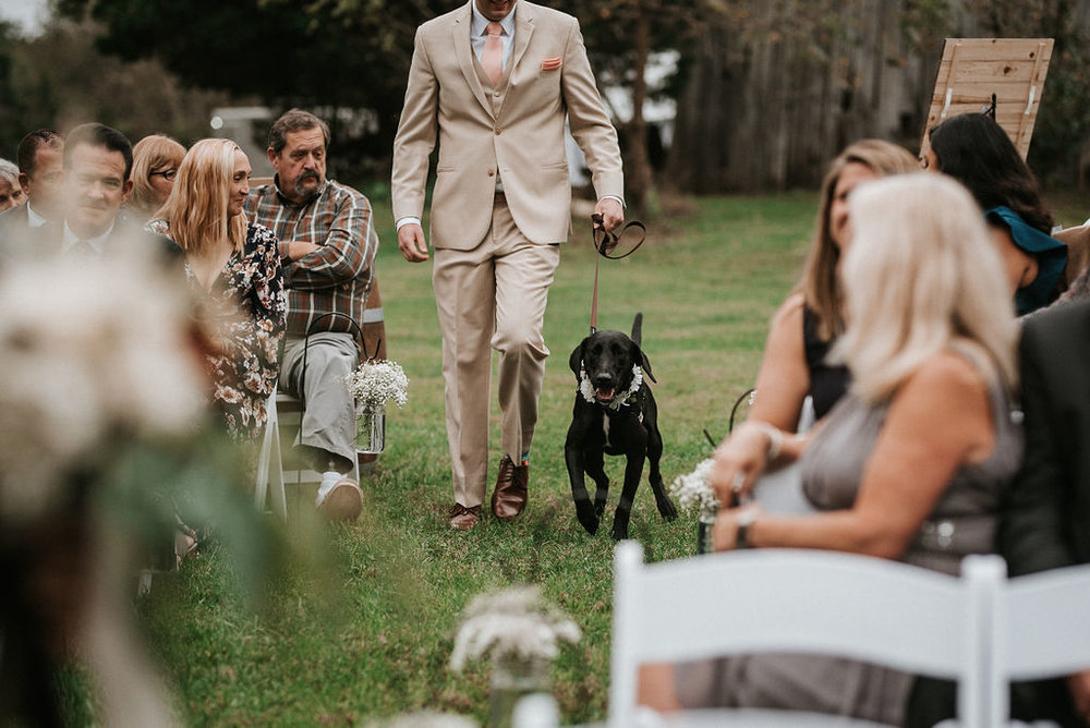 Groomsmen and dog walking up the aisle at 48 Fields Farm