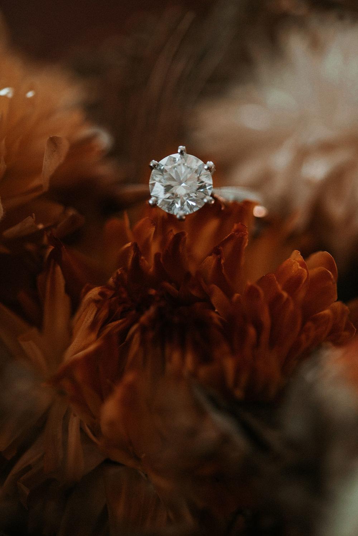 Detail Shot of Wedding Rings at Khimaira Farm