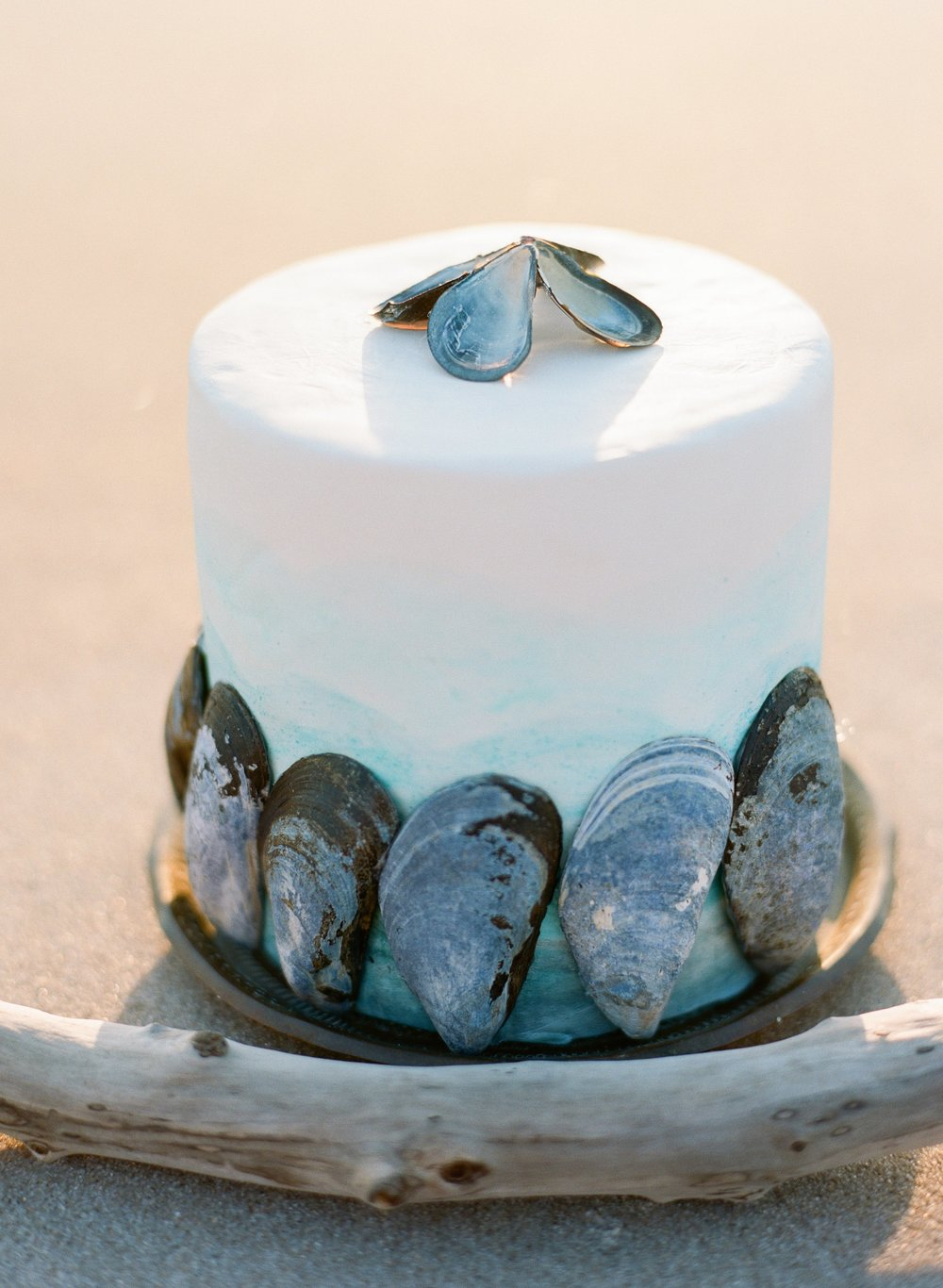 Oyster Inspired Elopement-0124.jpg