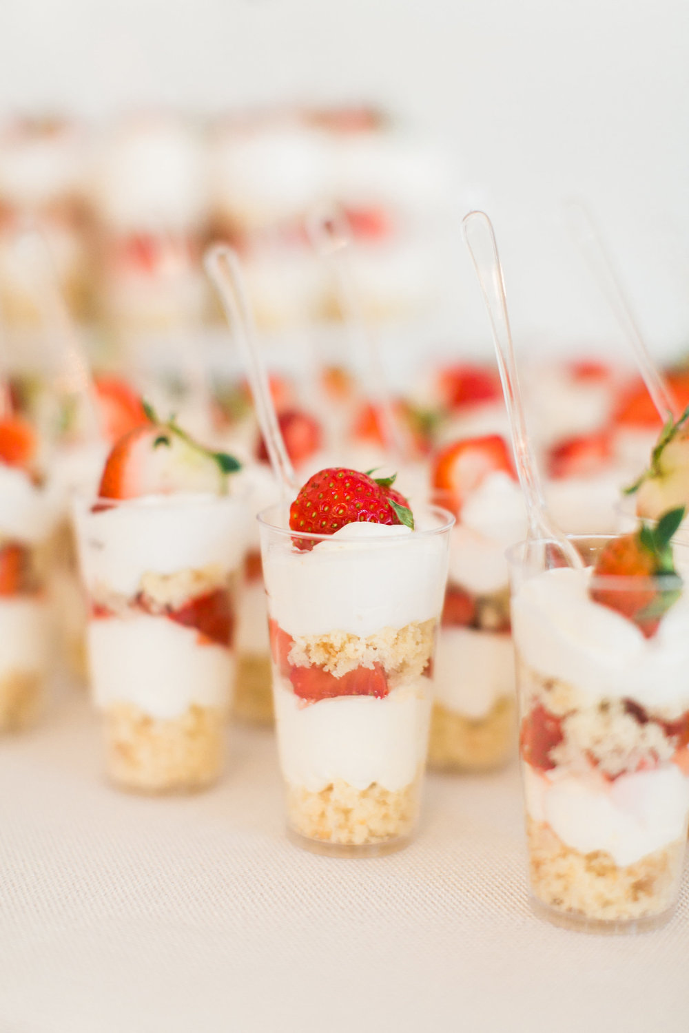 Raleigh_Dessert_Table_Sugar_Euphoria_SummerBash235.jpg
