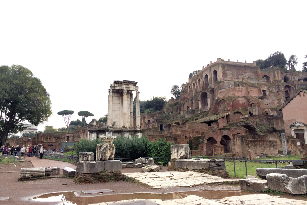 We learned that the Forum was used as a stone quarry to build other buildings in Rome, so a lot of marble is missing.