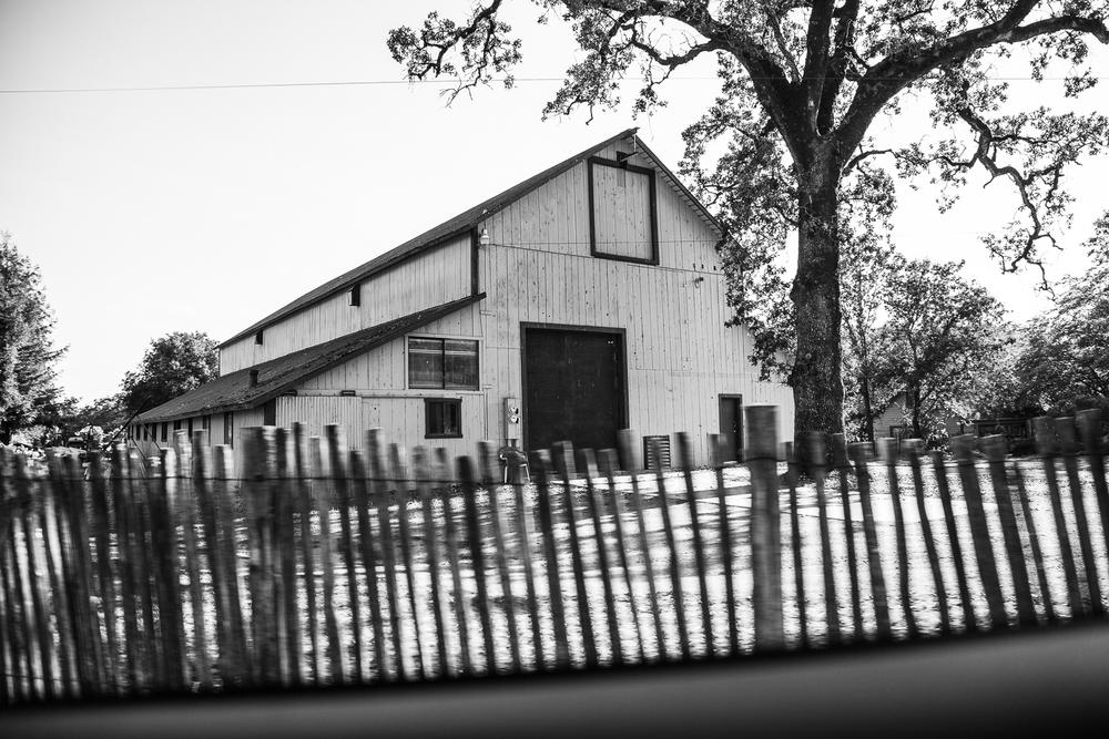 Rosebrock-barn-2774.jpg