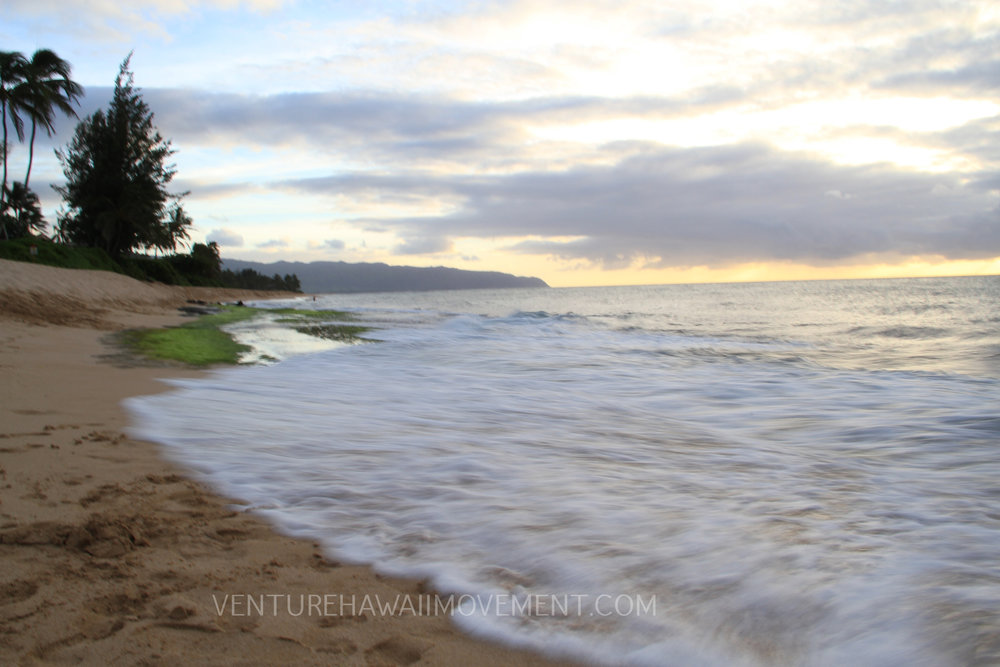 Laniakea Beach - On the North Shore of Oahu lays Laniakea Beach also known as Lani's or Turtle Beach. This beach is know for its perfect surf break during the winter and known for all the turtles swimming in the area close to shore or sun bathing on the sandy shore.