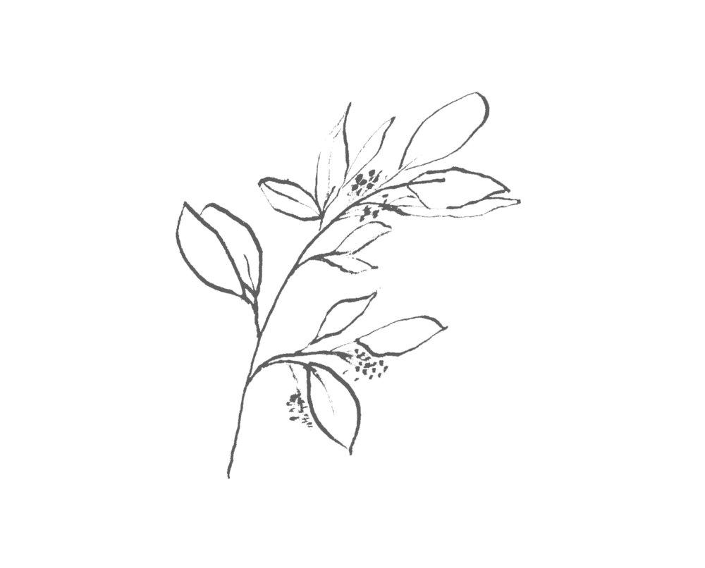 Leaf with Berries.jpg