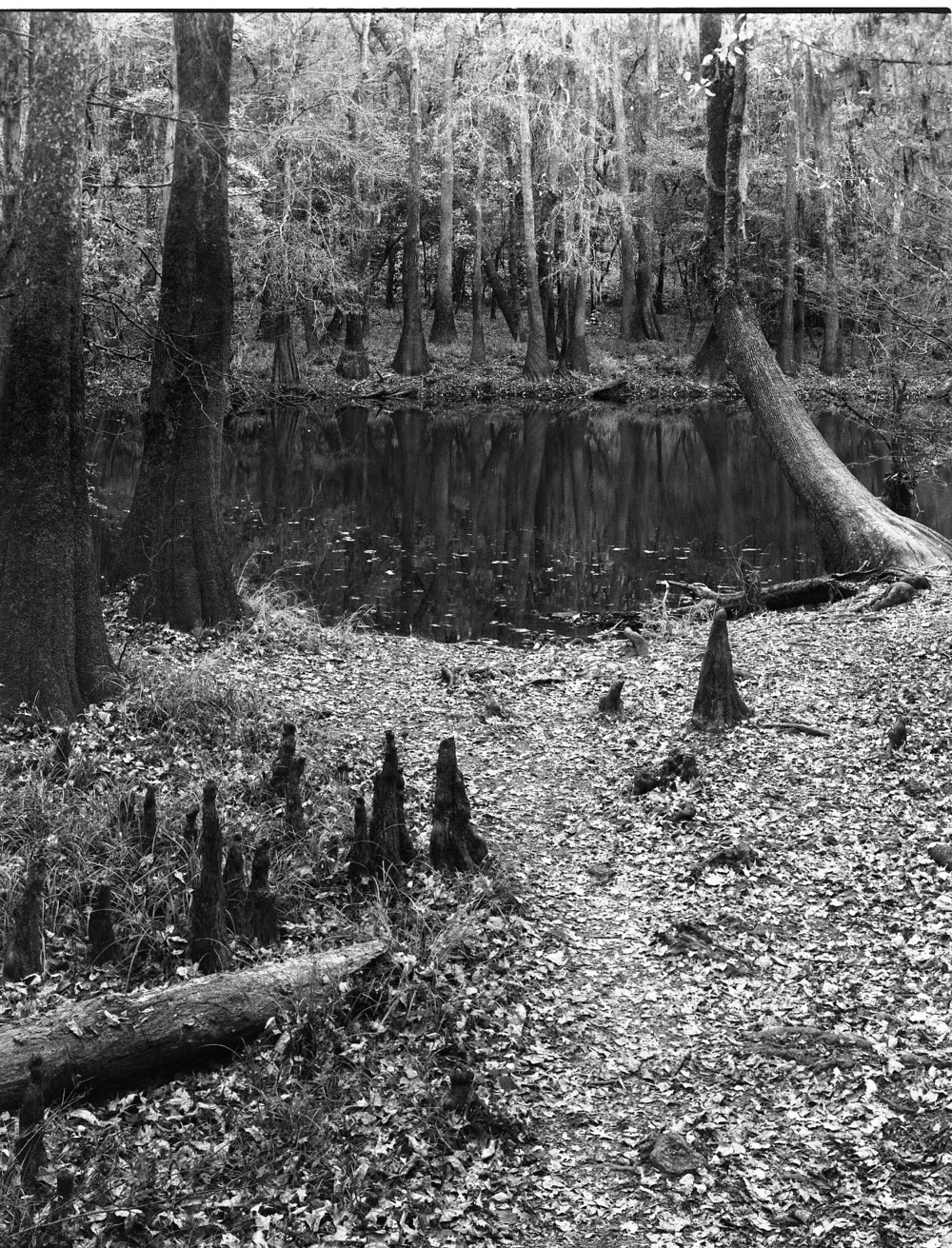 South Carolina (2).jpg