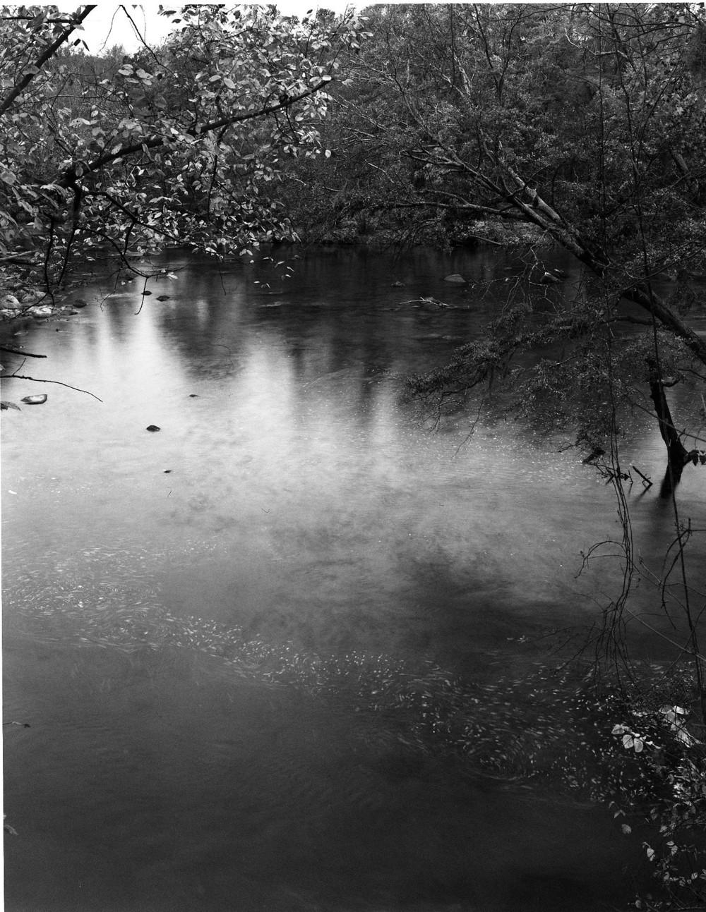 South Carolina005.jpg