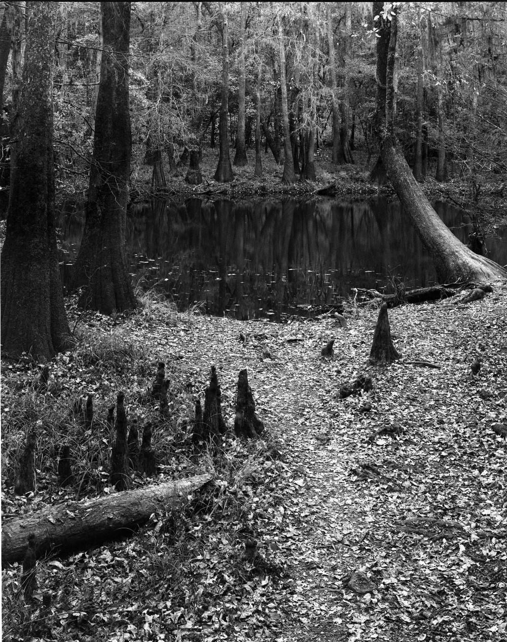 South Carolina016.jpg