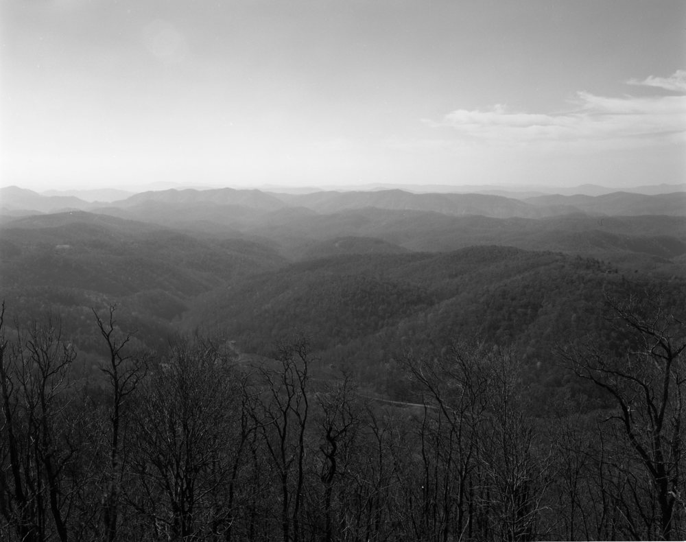 South Carolina017.jpg
