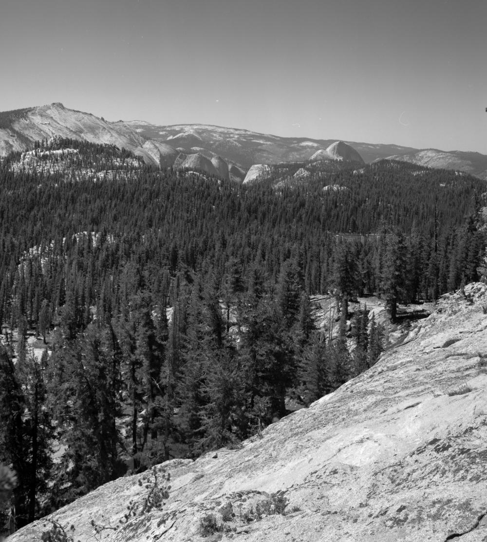 Yosemite021.jpg