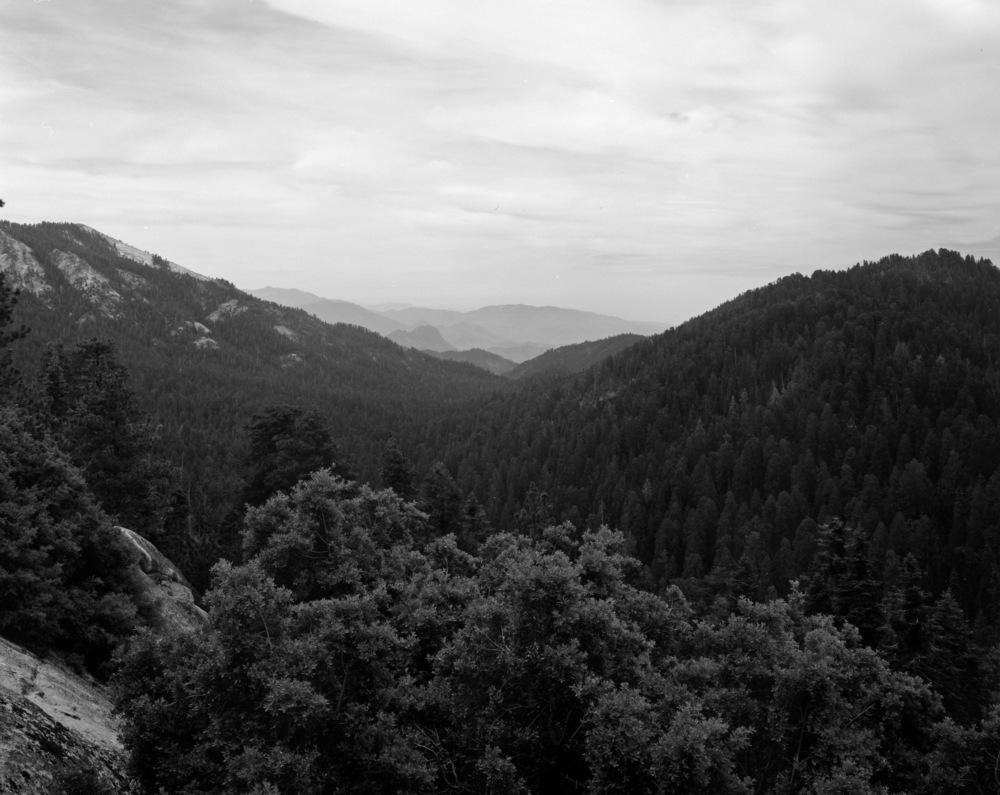 Yosemite028.jpg