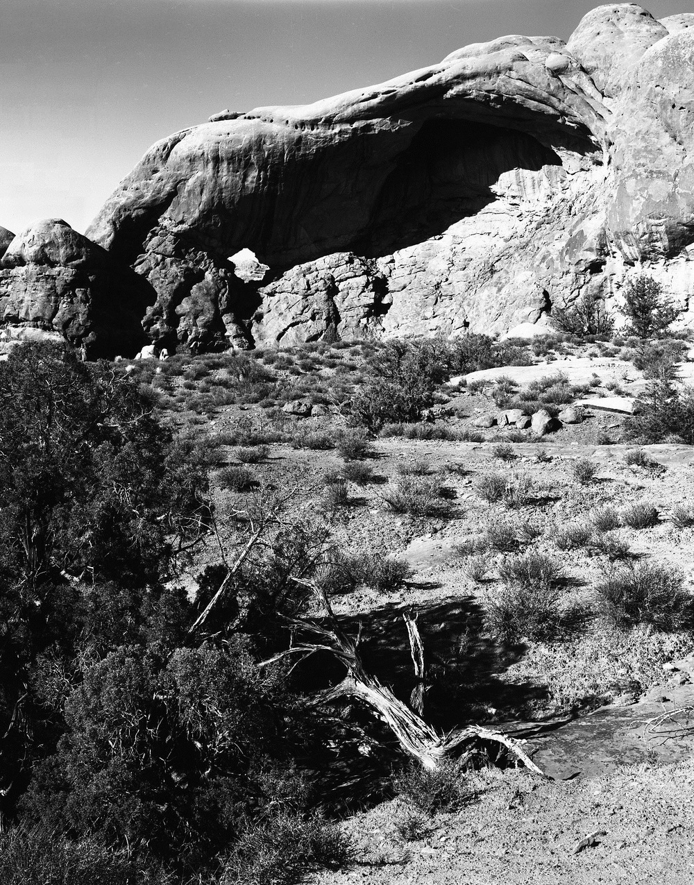 Arches National Forest010.jpg