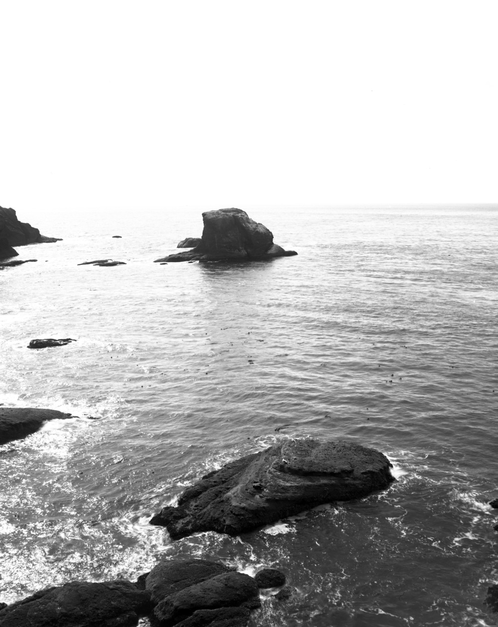 Neah Bay, Olympic National Forest.jpg