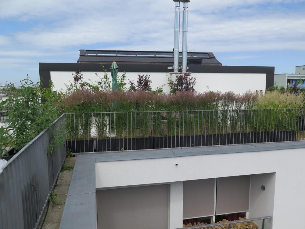 dachterrasse balkon nelka dachterrasse balkon. Black Bedroom Furniture Sets. Home Design Ideas