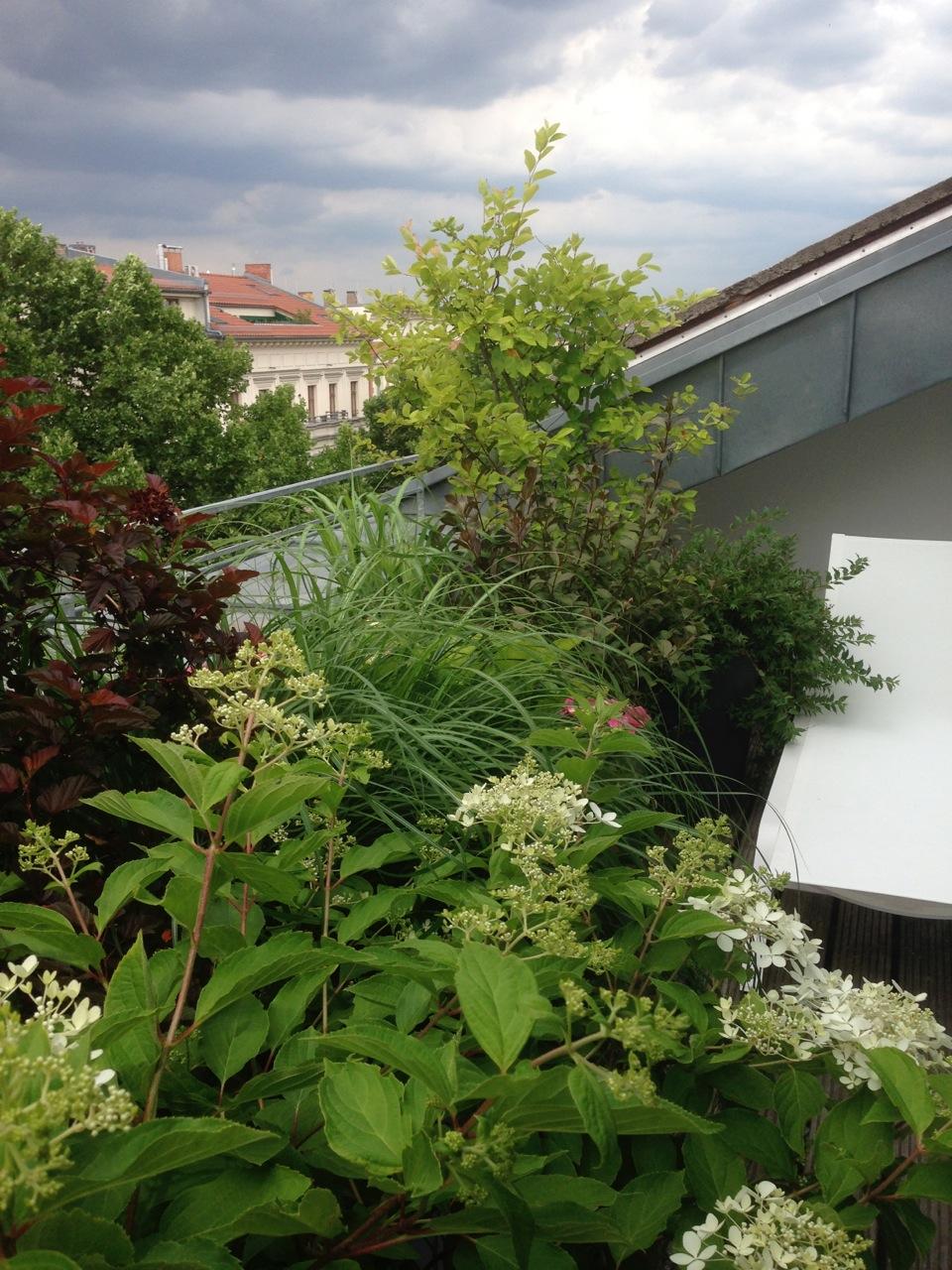 schmale Dachterrasse Berlin