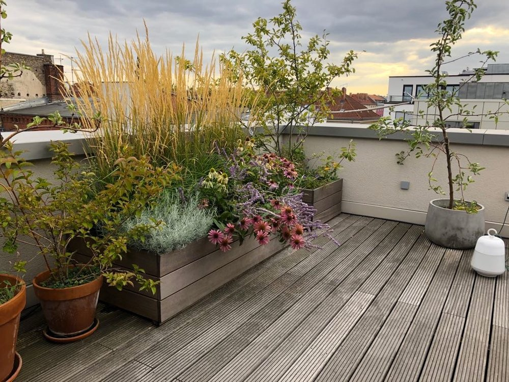 Hochbeet auf sonniger Dachterrasse