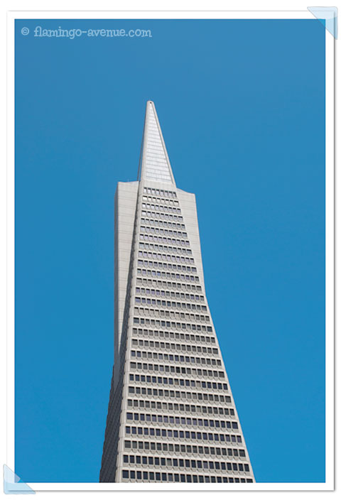 San Francisco, USA - Transamerica Pyramid