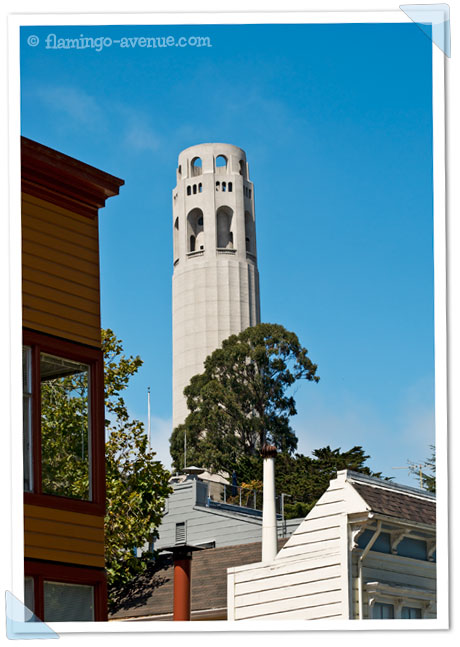 San Francisco, USA - Coit Tower