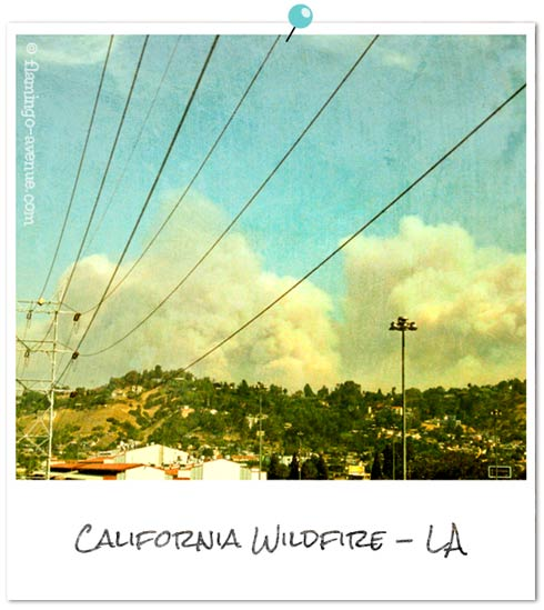 Los Angeles - Wildfire 2009