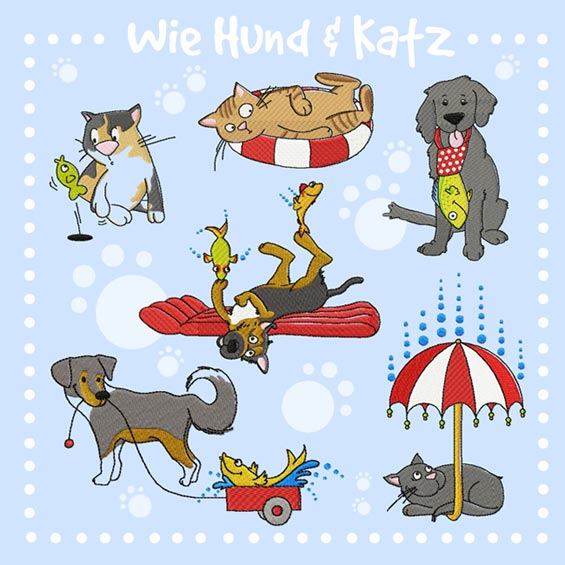 Wie Hund & Katz
