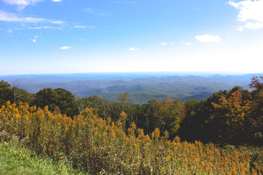 On the Blue Ridge Parkway, Fall 2014
