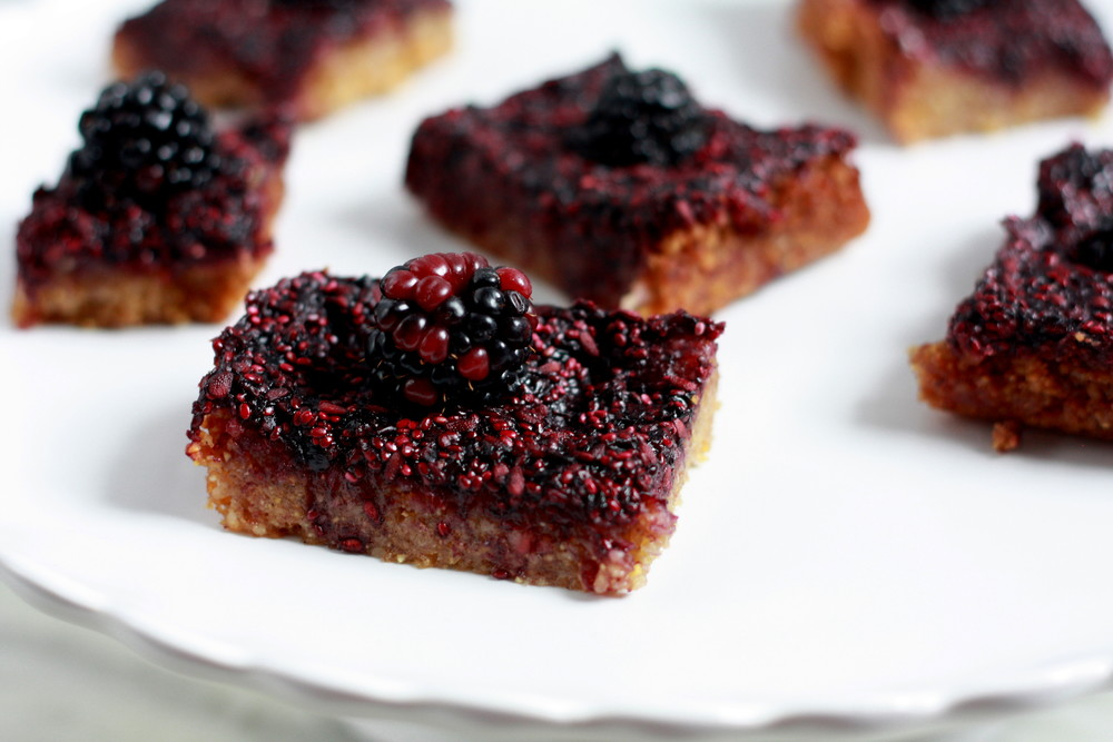 Blackberry Corn Bars