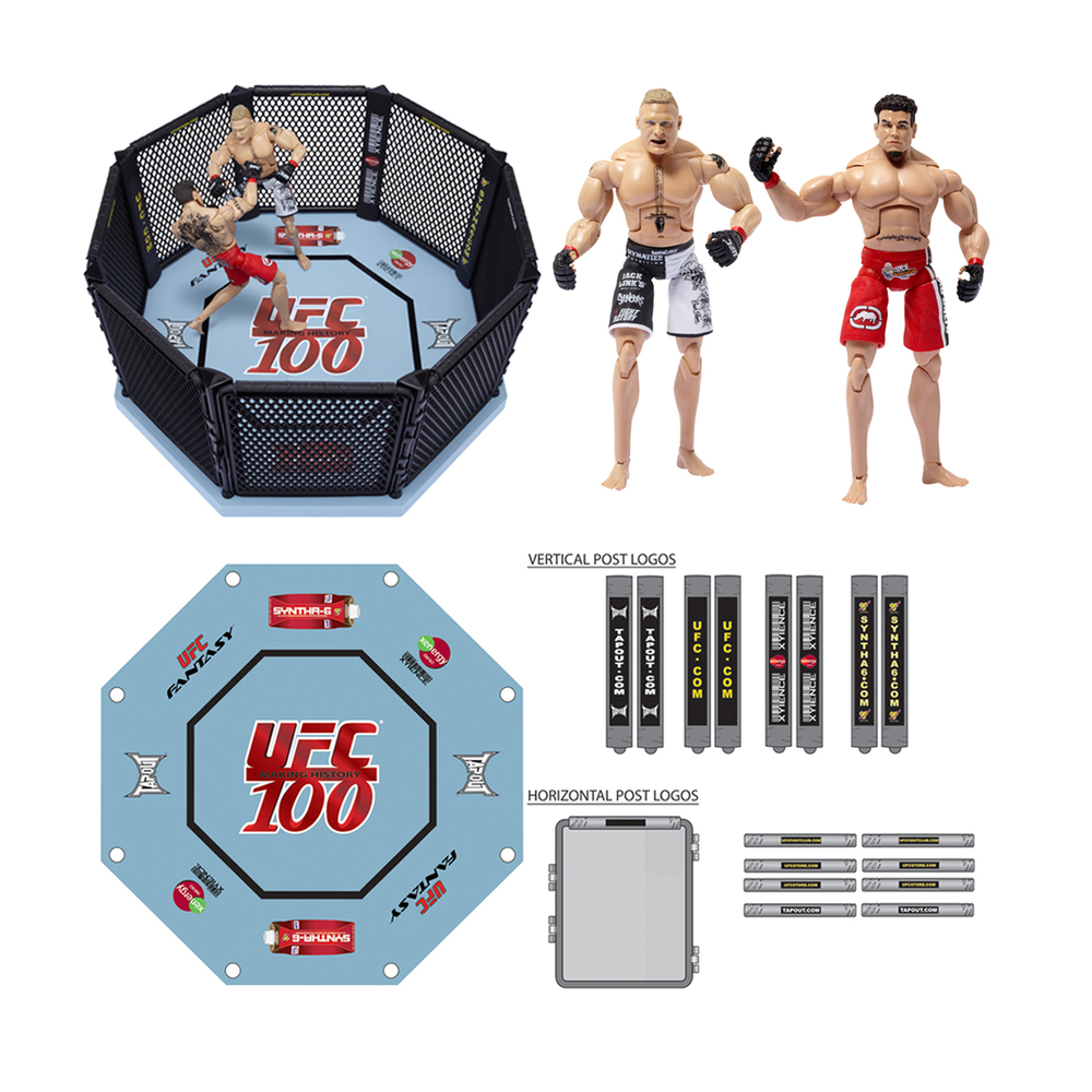 UFC Basic Octagon (UFC 100)