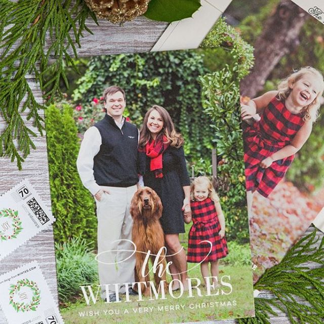 I'm an in love with the photos @pizzazzerie used in my Festive Name design from @minted! This is the very reason I love to create designs where the photo takes center stage. #minted #stationerydesign #stationerydesigner #christmascard #christmascards #holidaycards  #snailmail #stationery #familyphotography