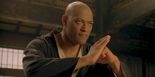 The martial arts scenes were vastly superior to the gun-fire scenes in the Matrix.