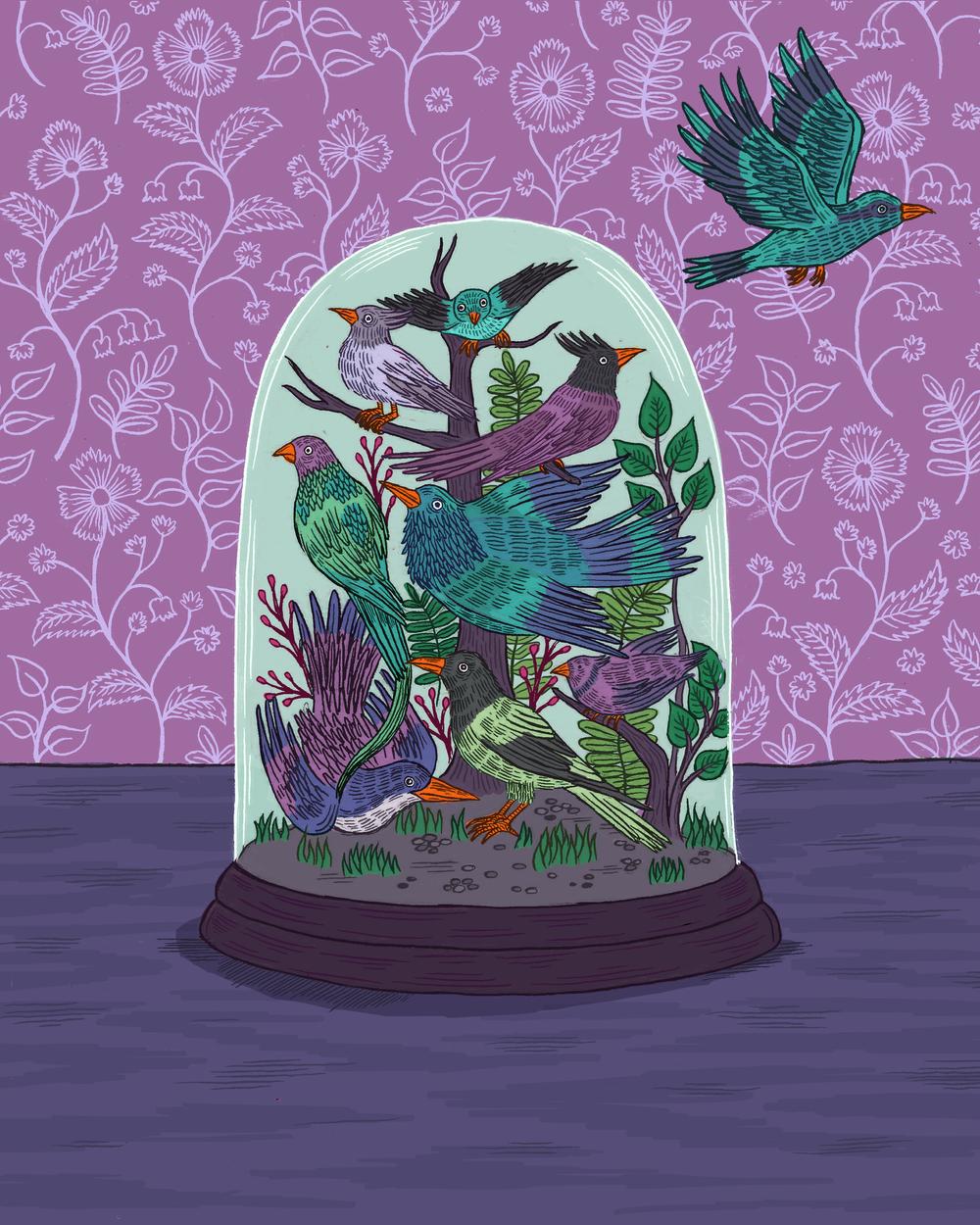 Bird Terrarium