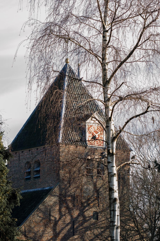 Batenburg-1.jpg