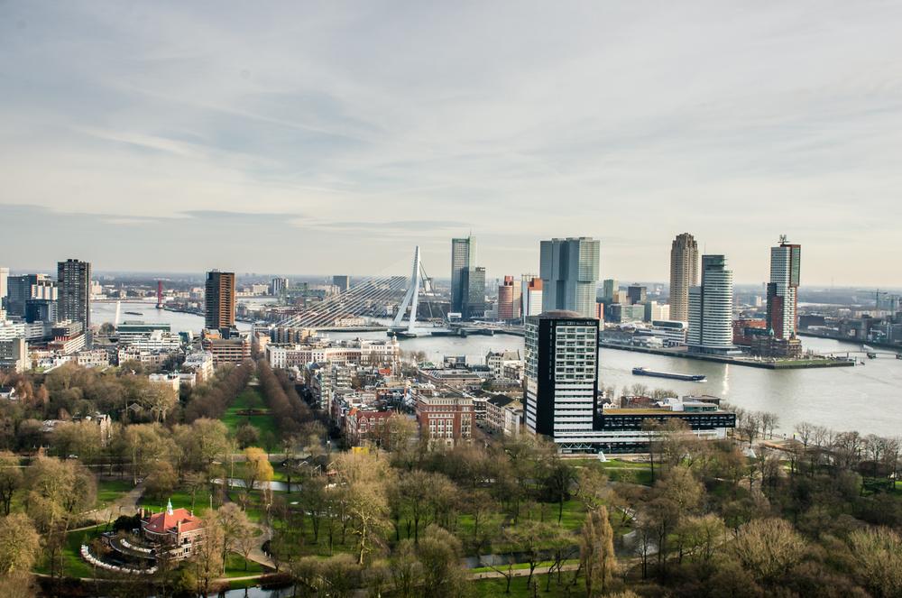 Rotterdam-6.jpg