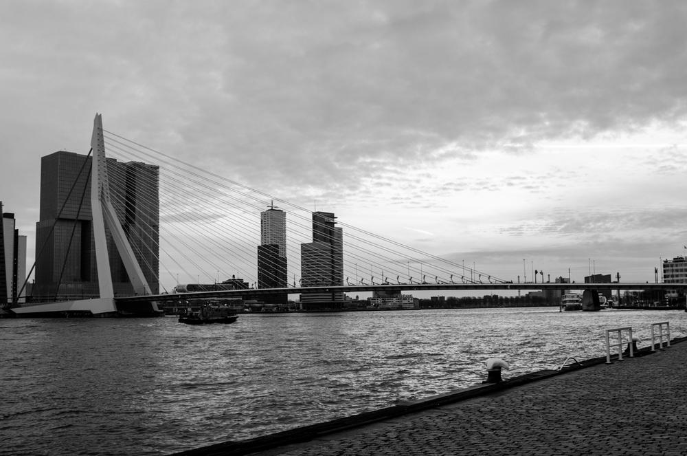 Rotterdam-45.jpg