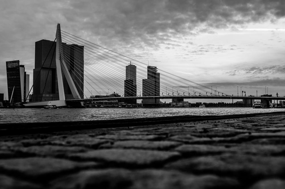 Rotterdam-49.jpg