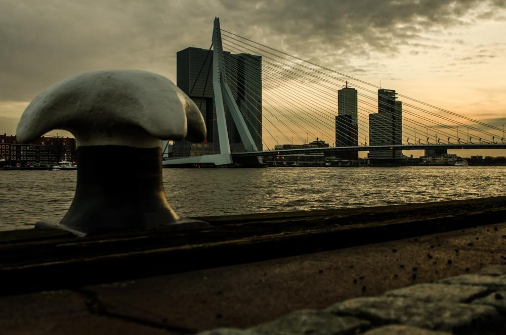 Rotterdam-50.jpg