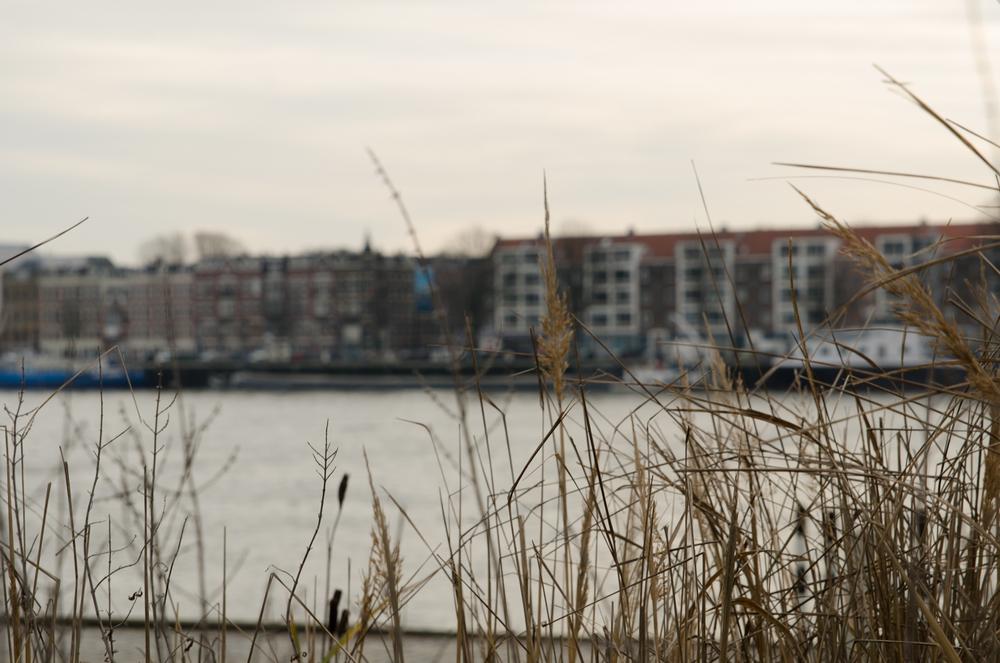 Rotterdam-55.jpg