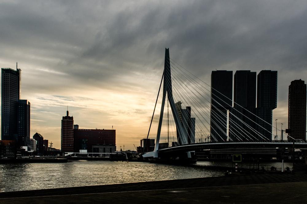 Rotterdam-54.jpg