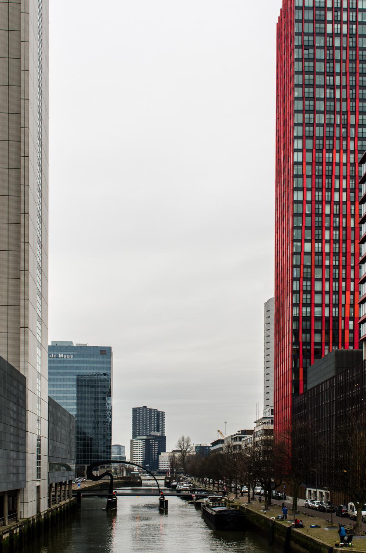 Rotterdam-62.jpg
