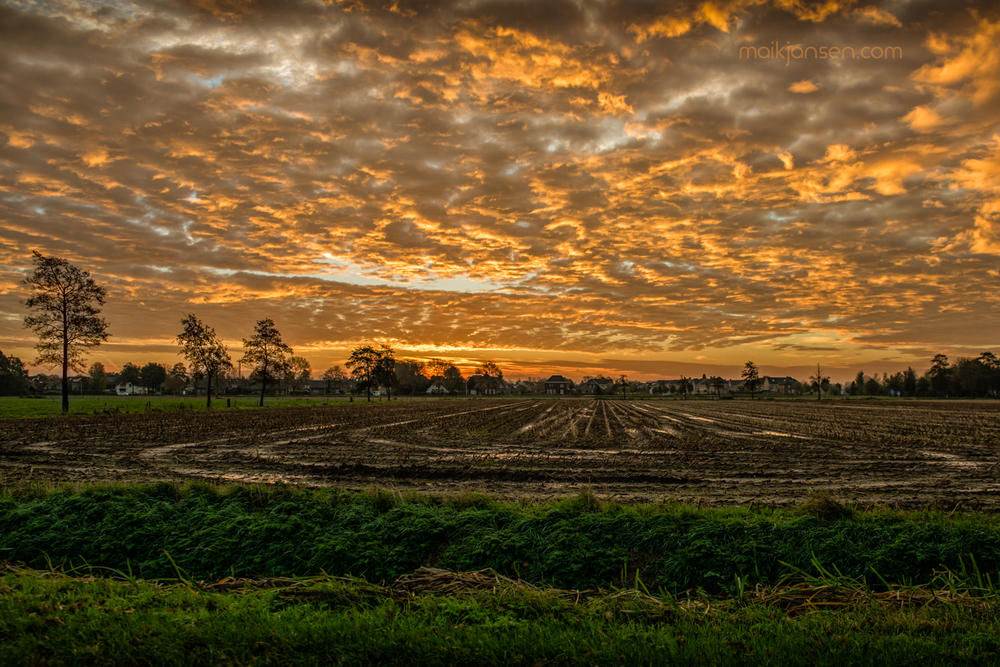 Sunrise on empty field. Exposure: 1/80 sec @ f/4,5 ISO 100 FL 24mm