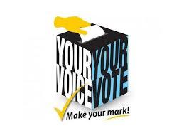 vote voice.jpg