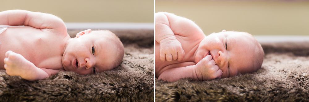 pittsburgh-newborn-photographer.jpg